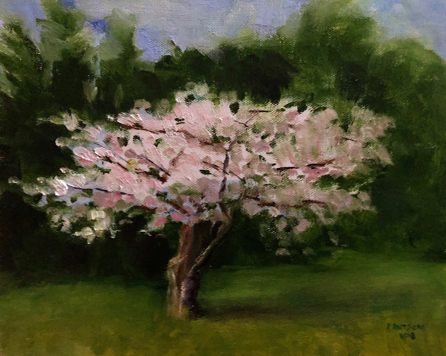 "Geoff Watson, ""Cherry tree in April,"" oil on canvas panel, 8"" x 10,"" 2018."
