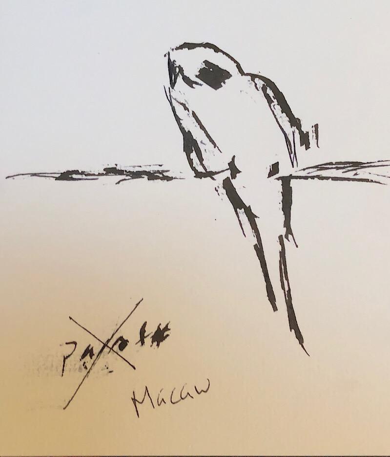 "Geoff Watson, ""Macaw,"" ink on paper, 5"" x 8,"" 2018."