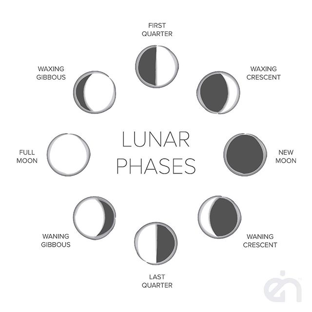 Inspired by the eight phases of the lunar cycle. The lunar ring symbolises femininity, the flow of time, eternity and the cycles of nature. Happy New Moon 🌚