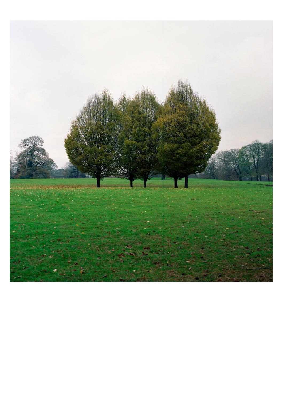 knaresborough-(9-von-13).jpg