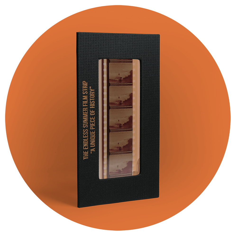 The-Endless-Summer-Box-Set-Book-Limited-Numbered-Edition-50th-Anniversary-Collection-frames.png
