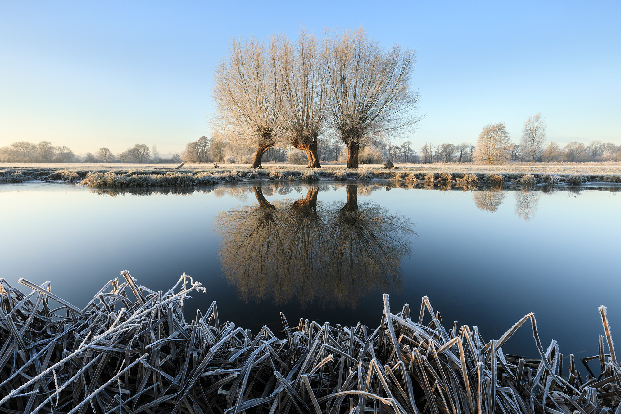 A frosty morning by the River Stour at Flatford, Suffolk  © Justin Minns/National Trust