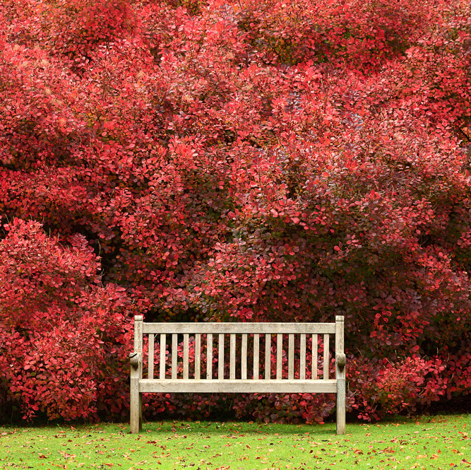 The National Trust -