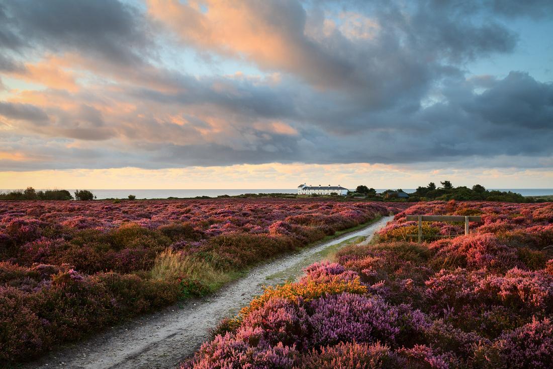 Sunrise at Dunwich Heath, Suffolk