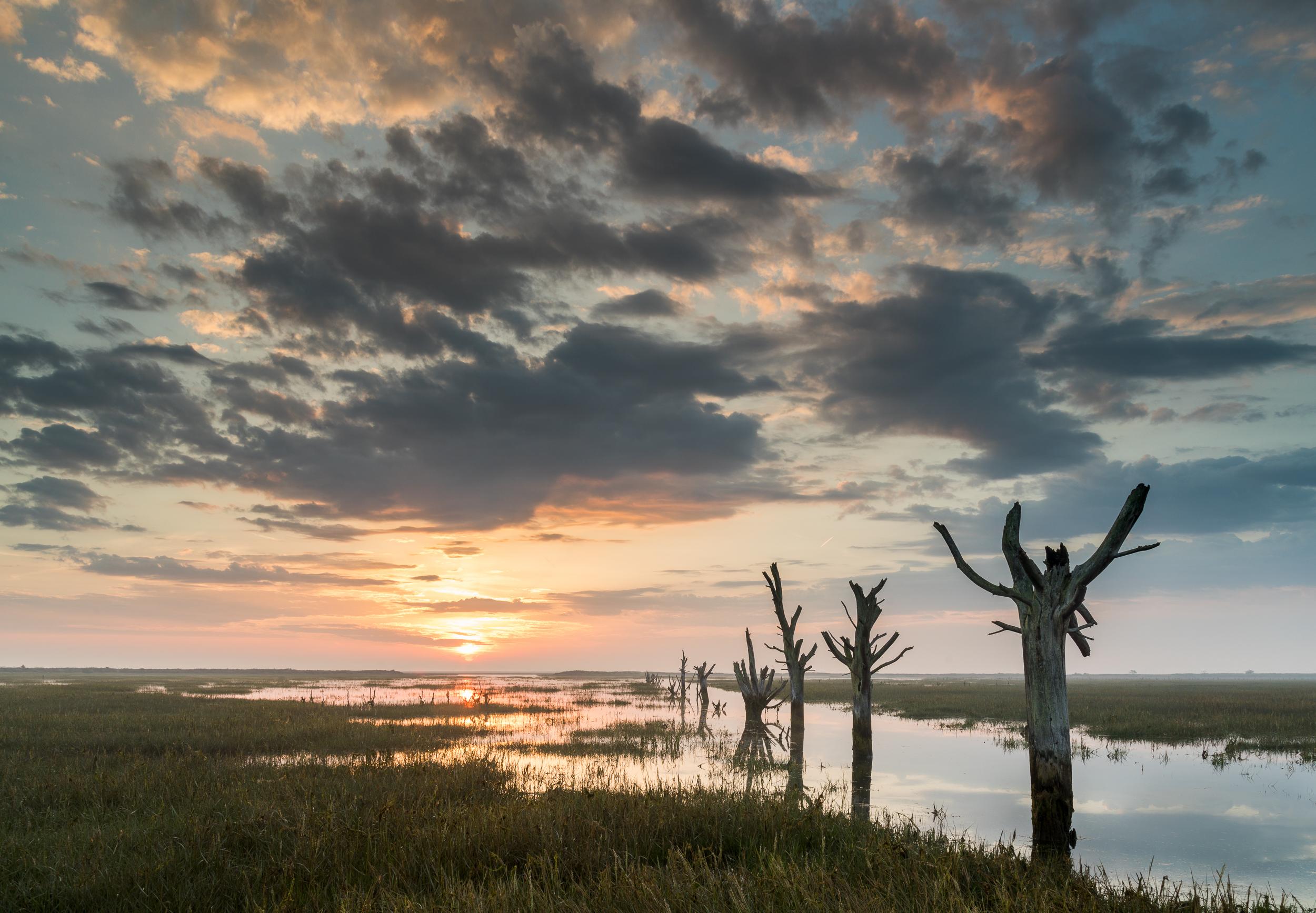 Sunrise on the Essex coast. Canon 5D mkIV, 16-35mm @ 20mm, 1.3sec, f16, ISO 100, Lee 0.9 reverse ND grad