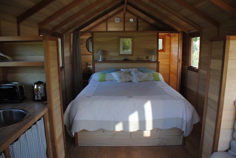 la cabane à Montmorillon 4.jpg