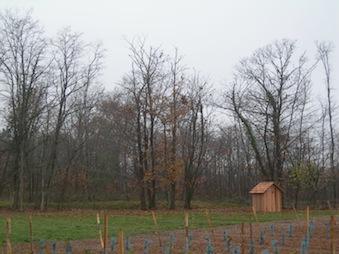 11-cabane-de-repos-abris-histoires-de-cabanes (2).jpg
