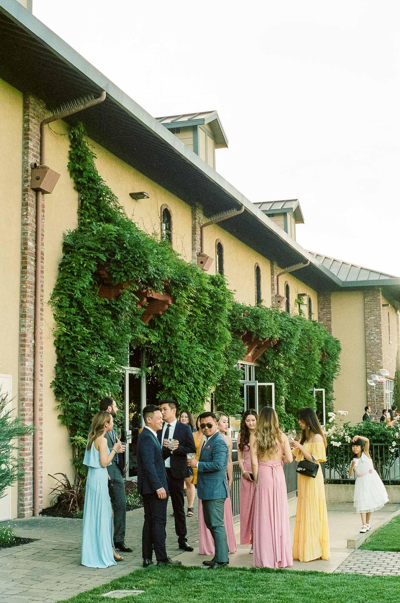 Wedding-Guests-Outdoors.jpg