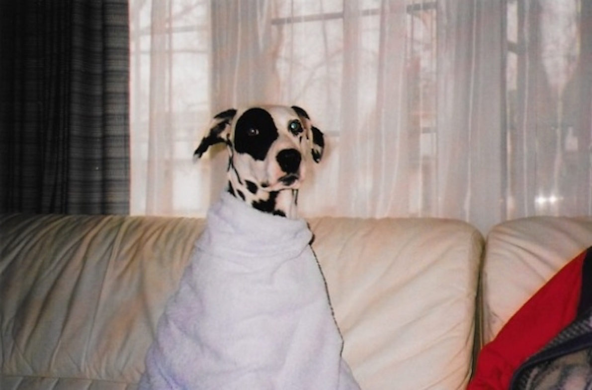 Singher wrapped in a towel after Mom had given her a bath with milk soap. Spoiled rotten every time.