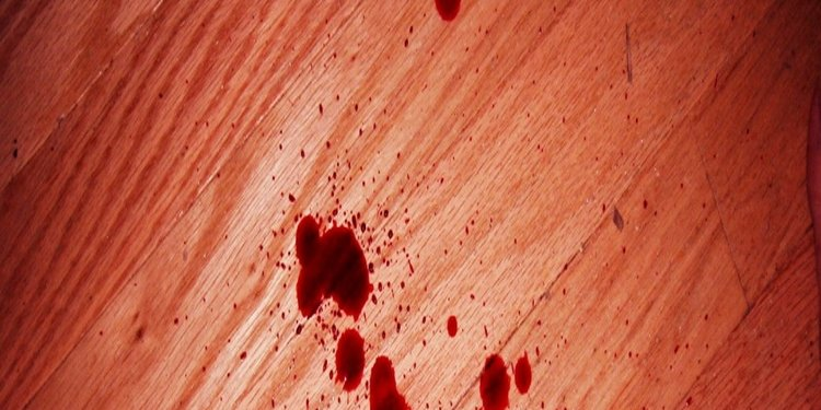 The Blood of wood and organs -