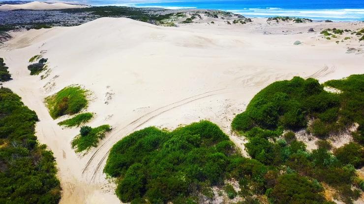 Sleaford Bay Dunes