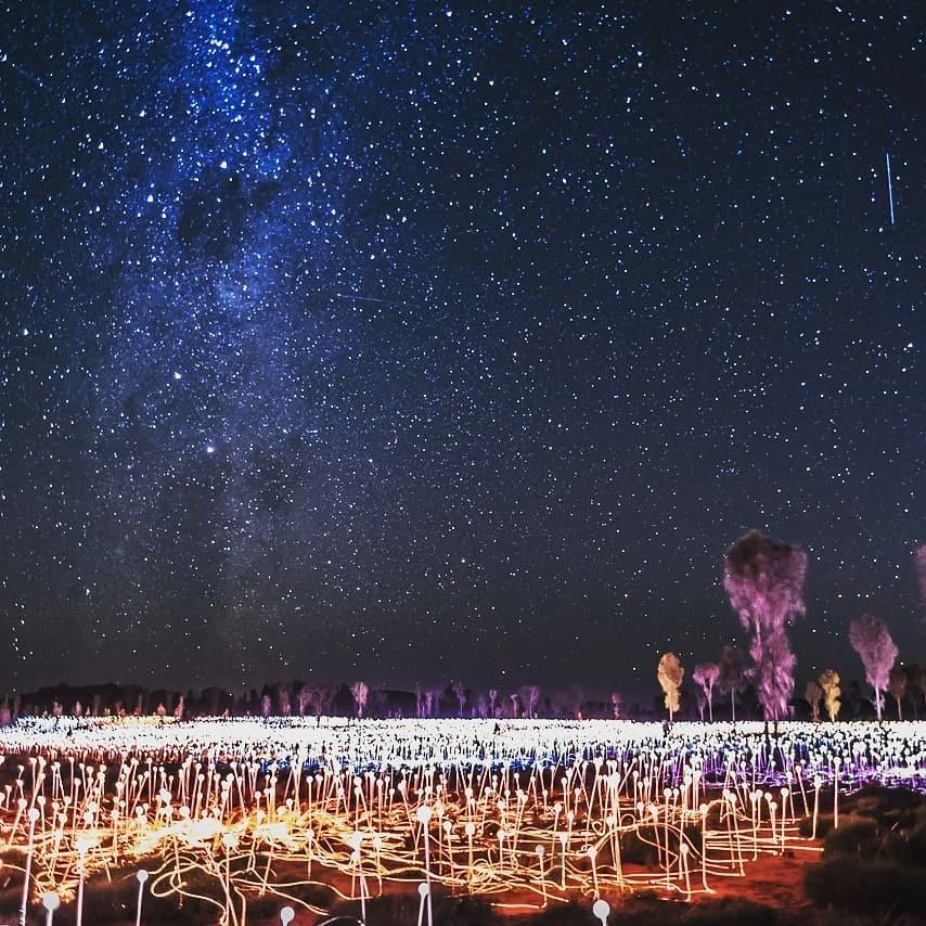 The Field of Light display at Uluru.