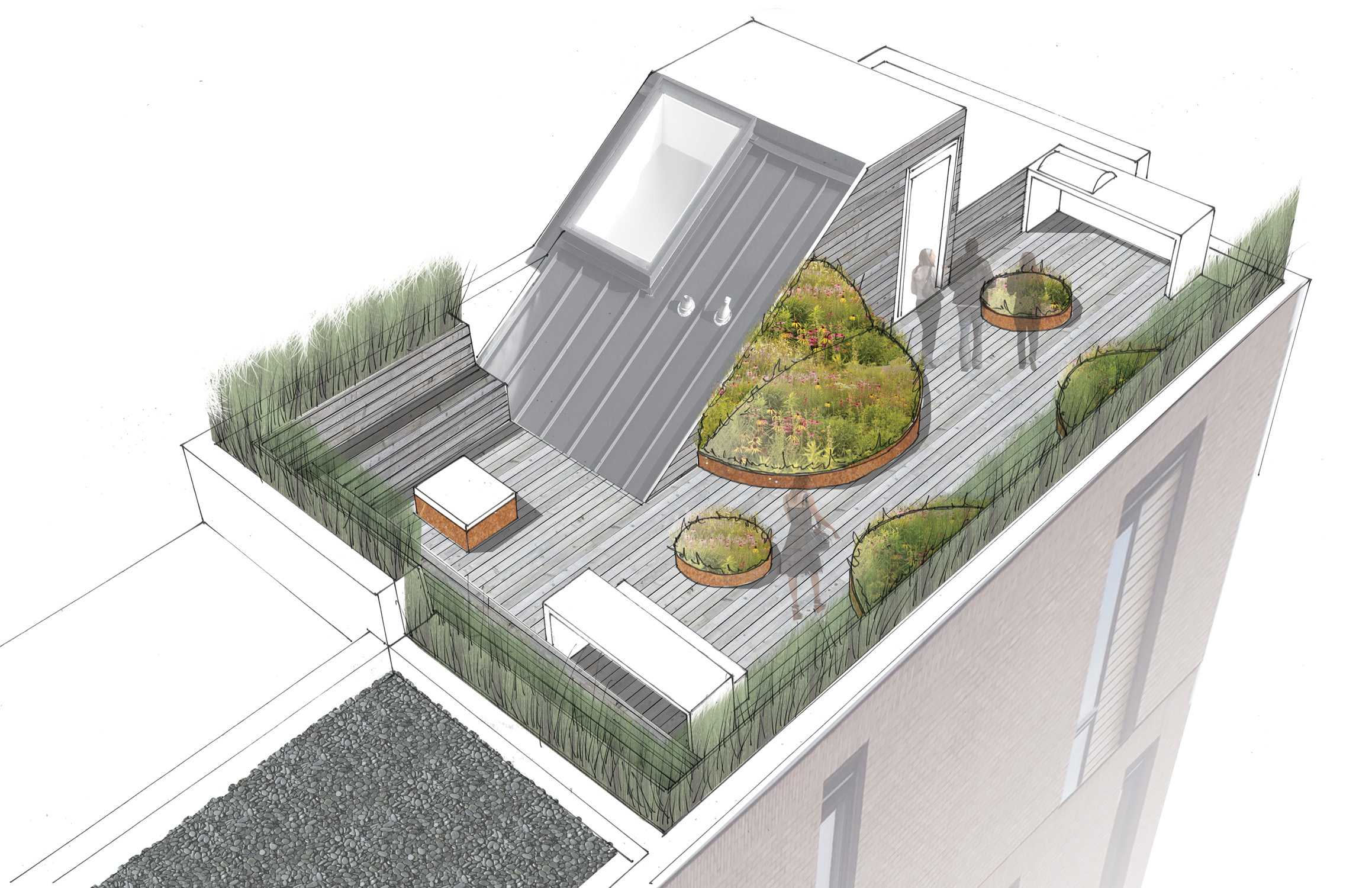 LOCH COLLECTIVE_LANDSCAPE ARCHITECTURE__BLAGDEN ROOF DITTO RESIDENTIAL_05.jpg