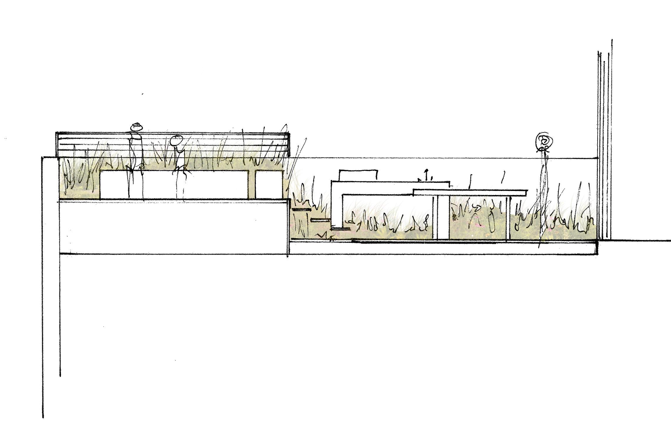 Elevation Sketch4-RenderWhite copy.jpg