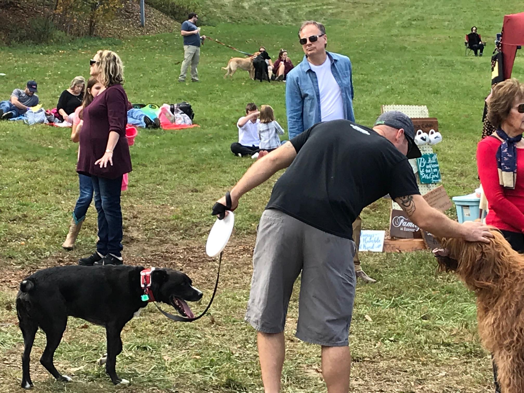 frisbee dog.jpg