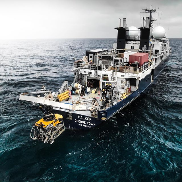 Day 15/23 out here onboard Falkor - So far we have done 14 dives between 500-1400m studying every aspect of the methane seep environments! Insane how much is going on in this earth that most of us don't even know about! @sheltondupreez for @schmidtocean . @usgs @woodshole_ocean @uradmissions @britgeosurvey . #science #expedition #sciencefacts #onassignment #ilovescience #research #researchvessel #explorer #explorerpage #freelancephotography #filmmaker #photographer #traveltheworld #yachting #yacht #uniladadventure #adventuretime #oregon #marine #marinebiology #ocean #oceanexploration #pacific #pacificnorthwest #rov #remote #oceanography