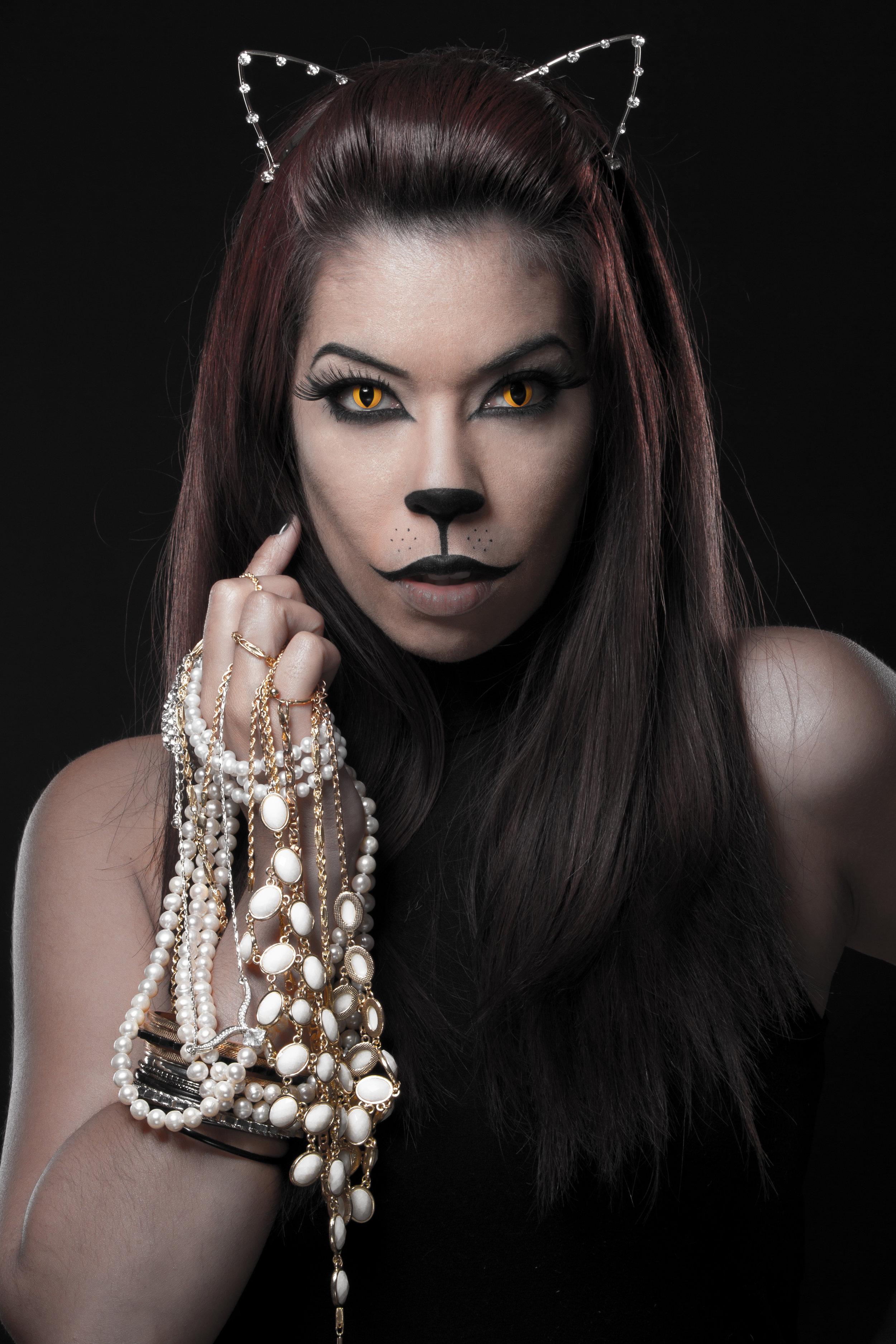 Cat Burglar-2.jpg