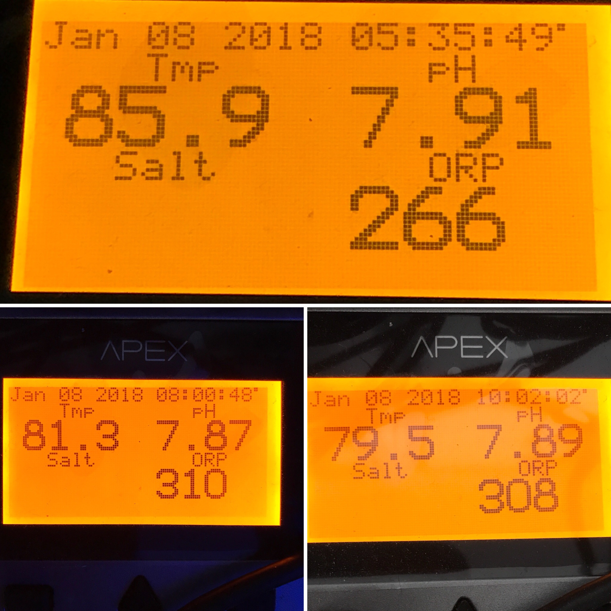 Three different temps, three different times. The top is from around 5:30 when the temp started going down after I put ice packs in the sump. The second and third are from later in the morning.