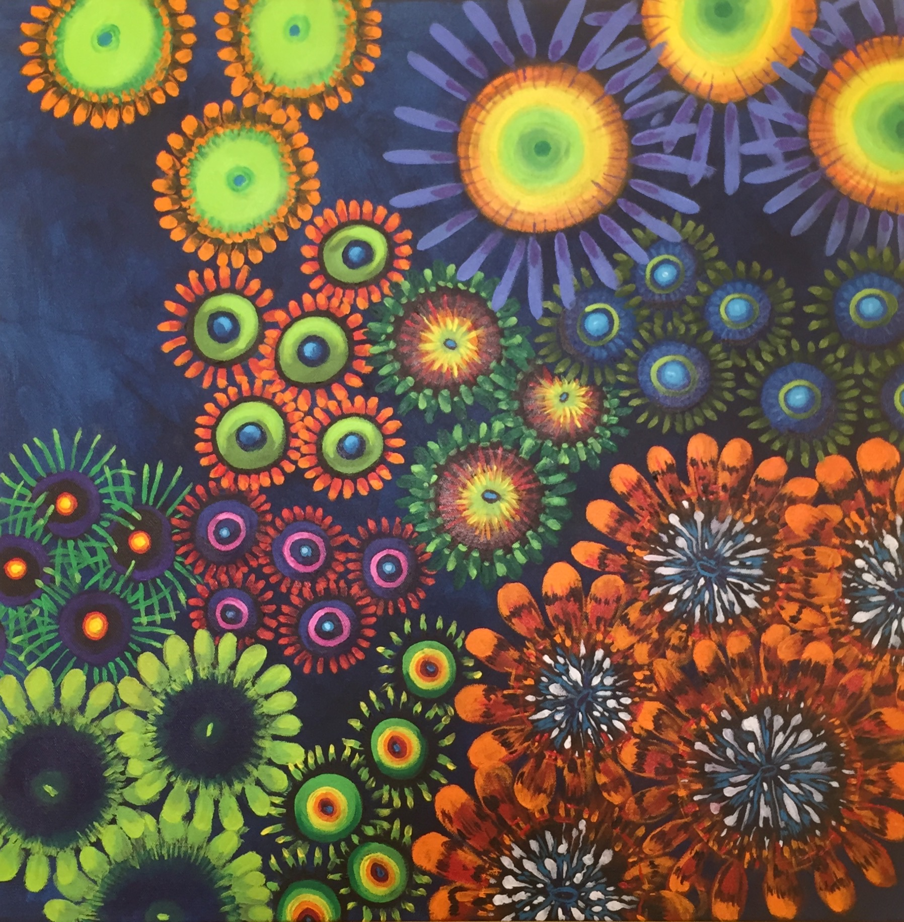 One of the custom zoanthid garden paintings done for World Wide Corals