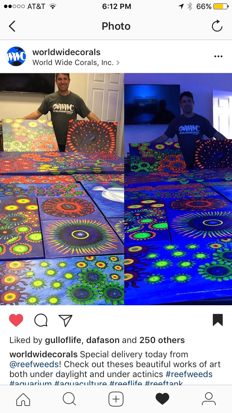 Victor Fornari from World Wide Corals with the ReefWeeds delivery