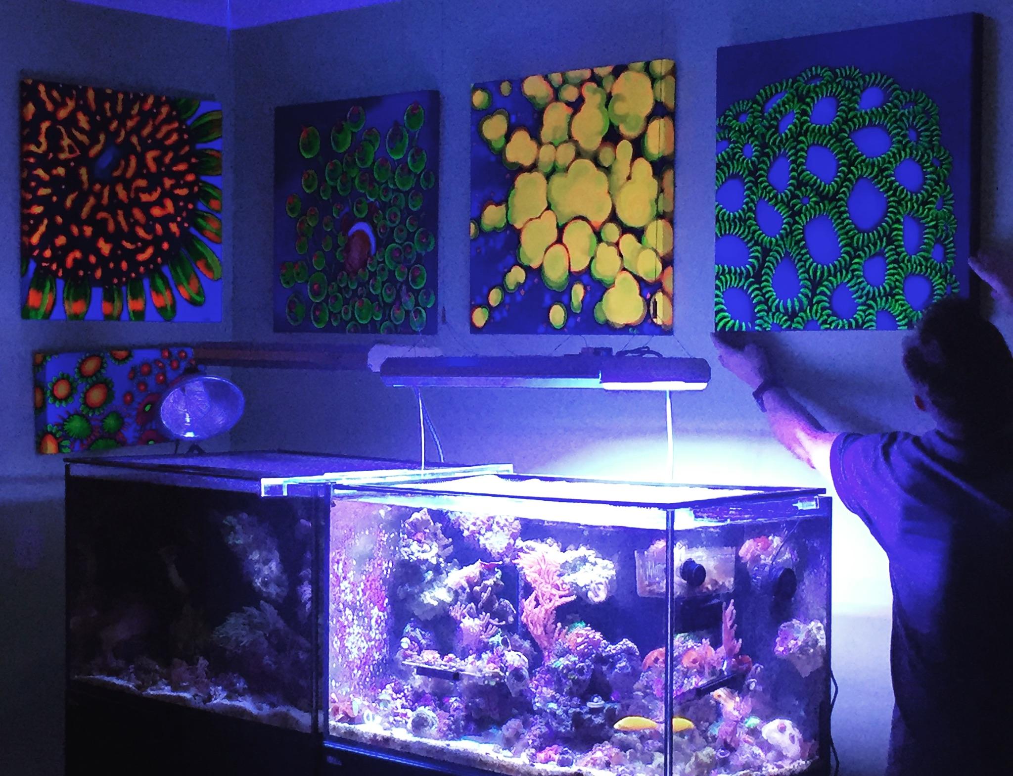 Jeff hanging some work above my reef and macro tanks - my original goal!