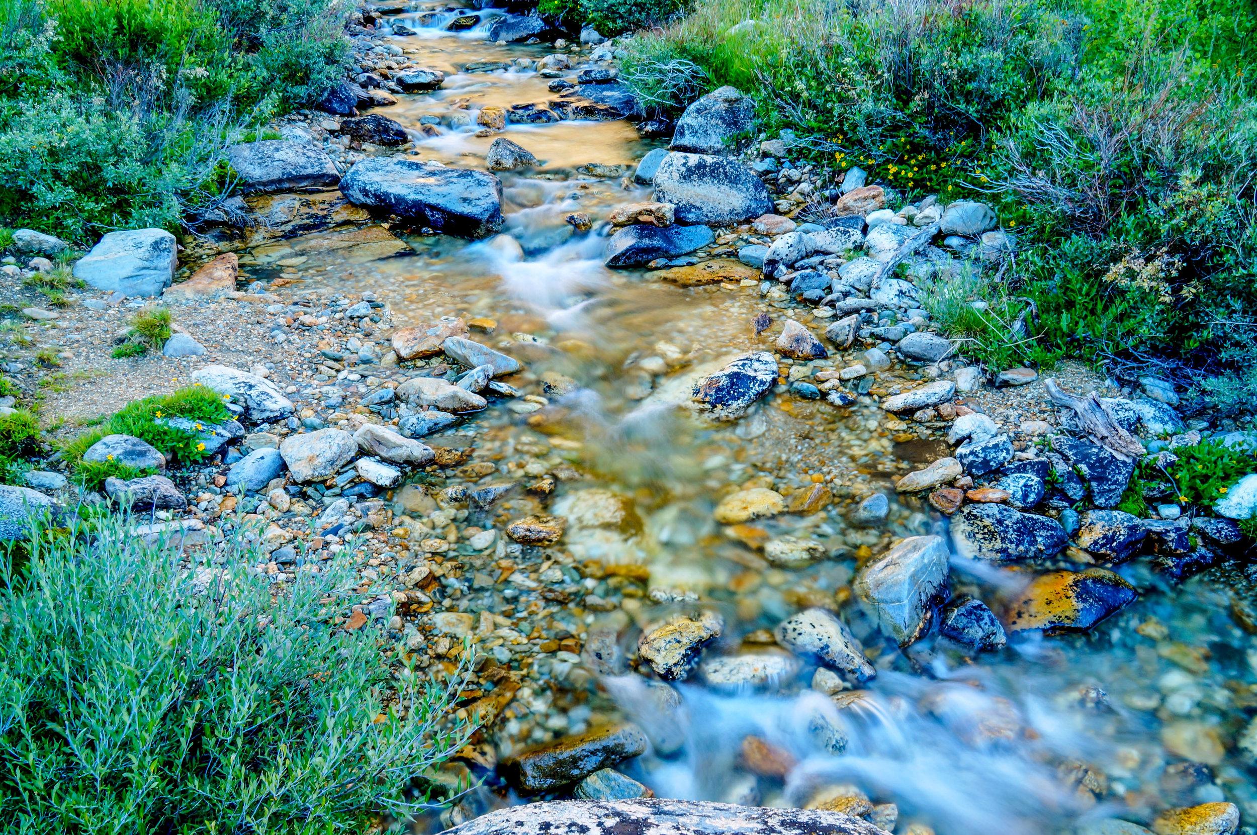 Alpine Stream-1.jpg