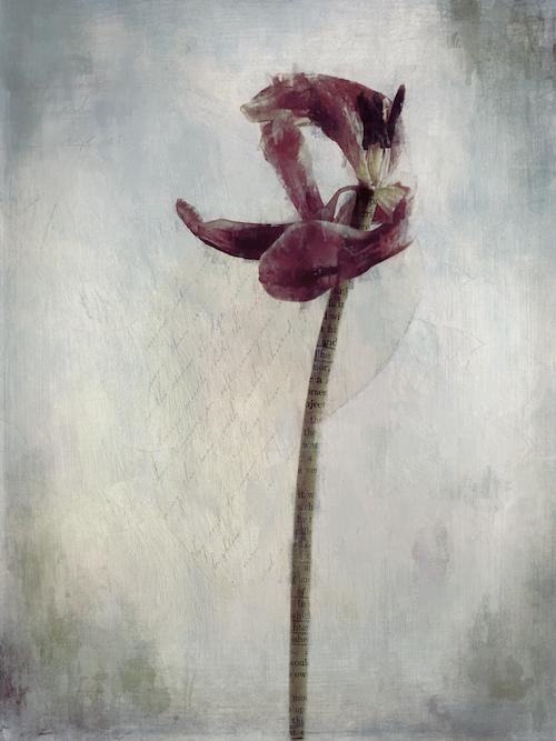 digital art with tulip