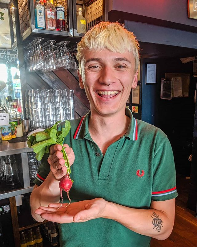 When a regular gives you a radish as a tip! Our staff accept all fruits and vegetables 🌽🥕🍒 . . . #radish #urbanpubsandbars #barlife #publife #bartender #bartenderlife #serverlife #radish #vegtables #talkshow #harrisonswann #ktown #nw5 #kentishtown #northlondon #camden #london #tuesday