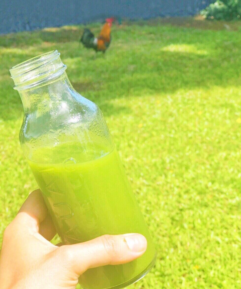 Glow Cold Pressed Juice at Kauai Juice Co