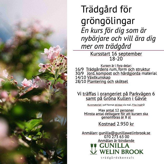 """Ny trädgårdskurs för Dig som är """"grön"""" nybörjare. Kom och bli inspirerad! Begränsat antal platser! Välkommen med Din anmälan🌷#trädgårdsutbildning #trädgårdskursförnybörjare #grönakullen #gunillawelinbrookträdgårdskonsult"""