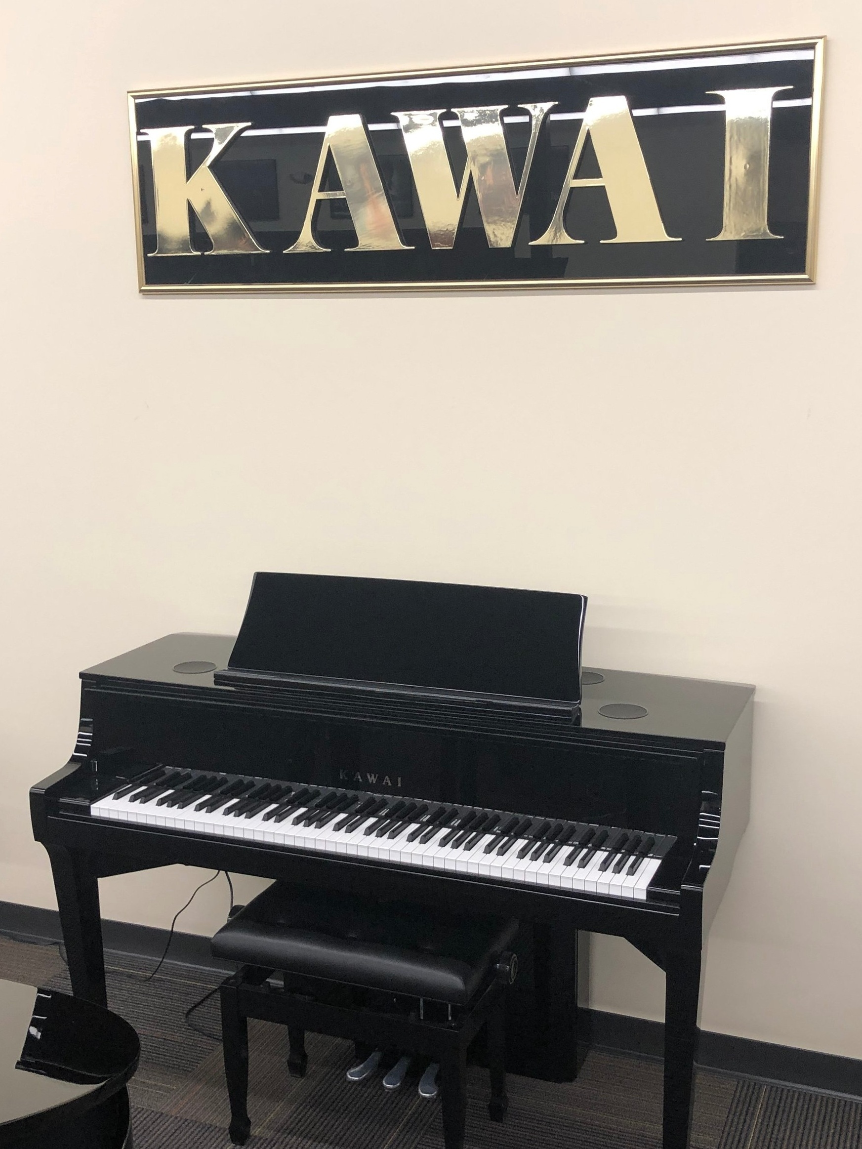 The Incredible Kawai Novus NV10