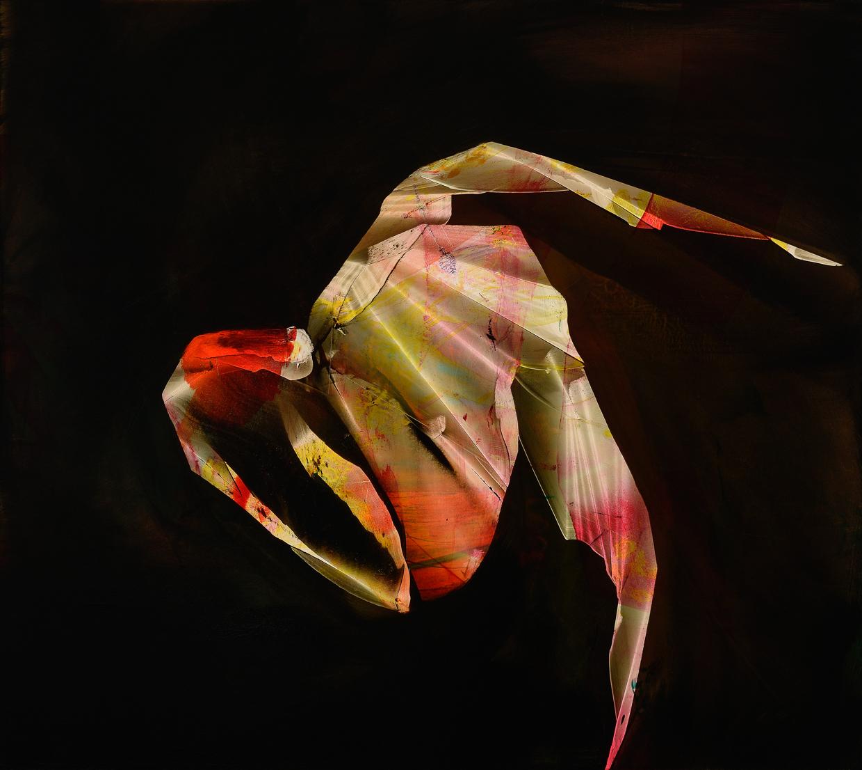 "Harlequin, 2015, oil on panel, 16"" x 18"""
