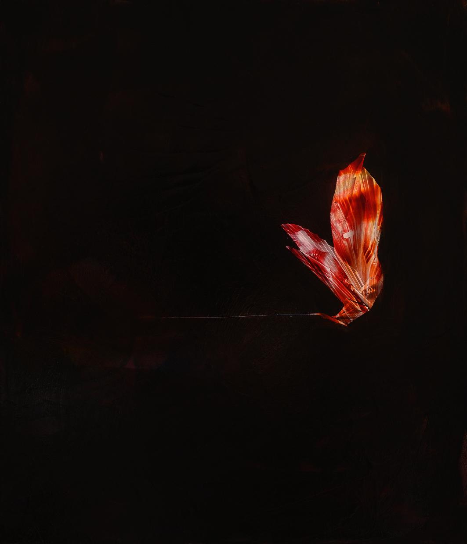 """Arachne, 2015, oil on panel, 14"""" x 12"""""""