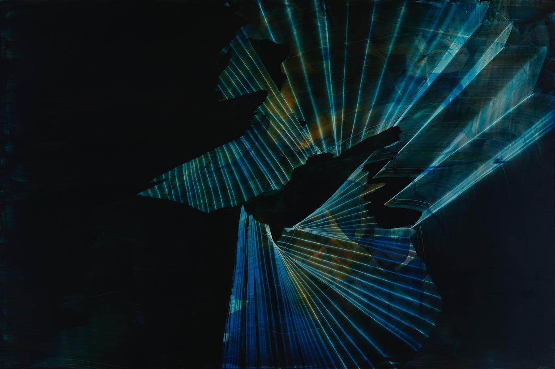 "Lyre Lark, 2014, oil on panel, 24"" x 36"""