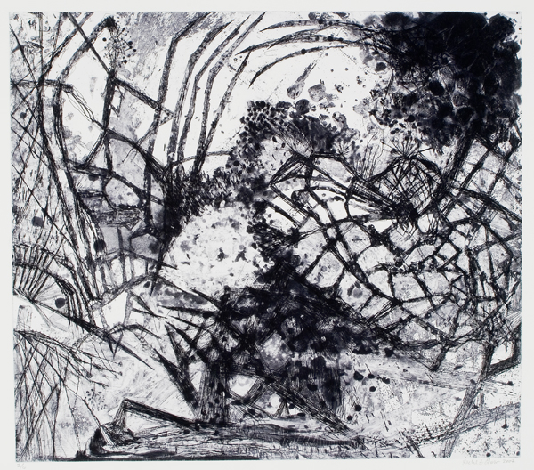 "Offsides, 2007, etching, edition of 6, 22"" x 24"" (paper size)"