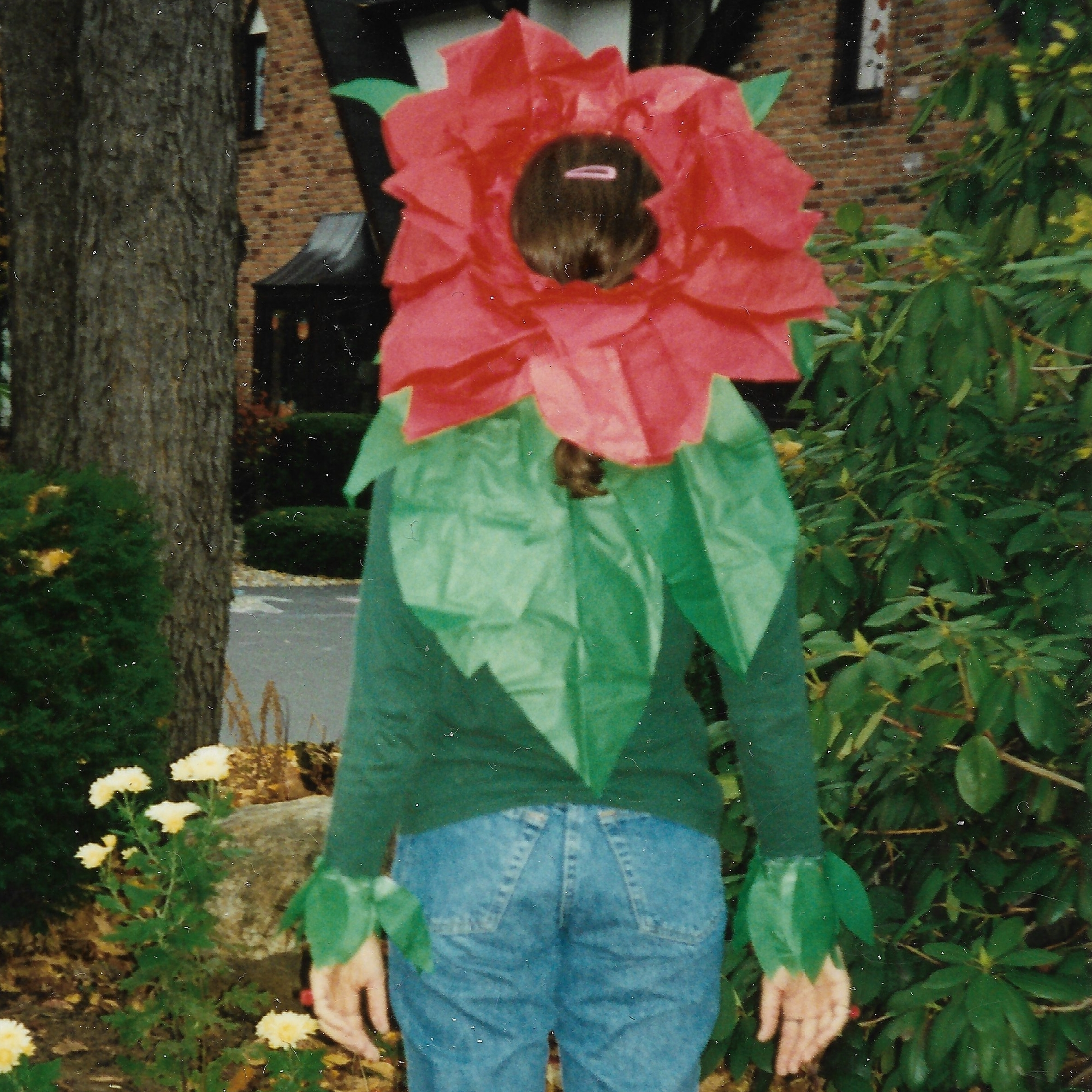 1995 The Flower