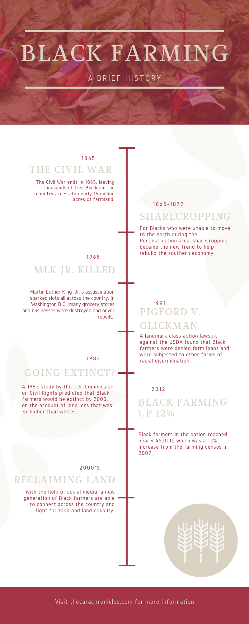 Simple Red Wine Timeline - Infographic.png