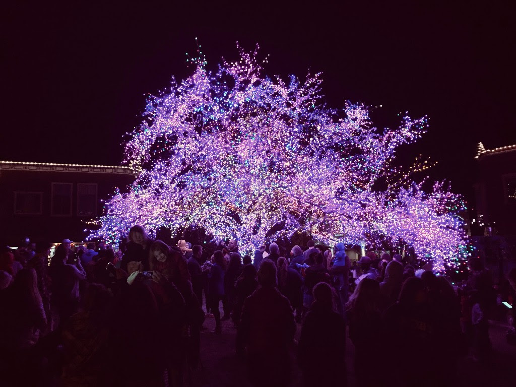 "The ""Magic Tree"" is lit every year and thousands of people from across Missouri come to see it. It is located across the street from where our Preview Gatherings meet."