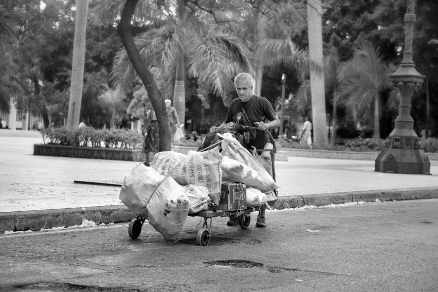 El Reciclaje, 2012
