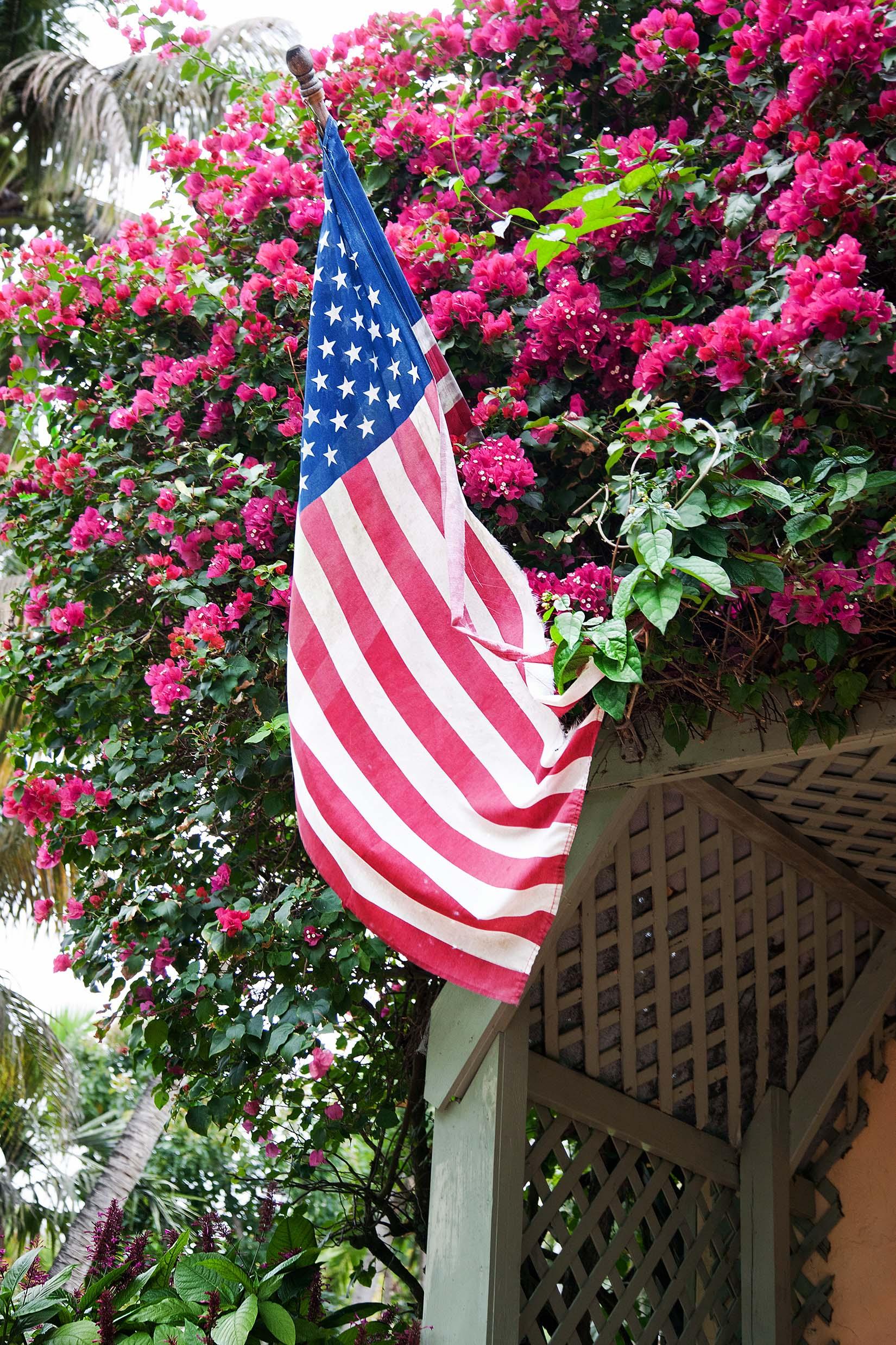 Garden with Flag, 2013