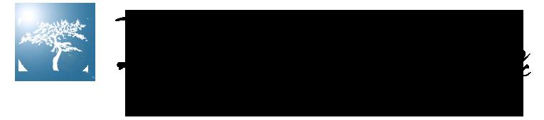 IBD-logo2017.png