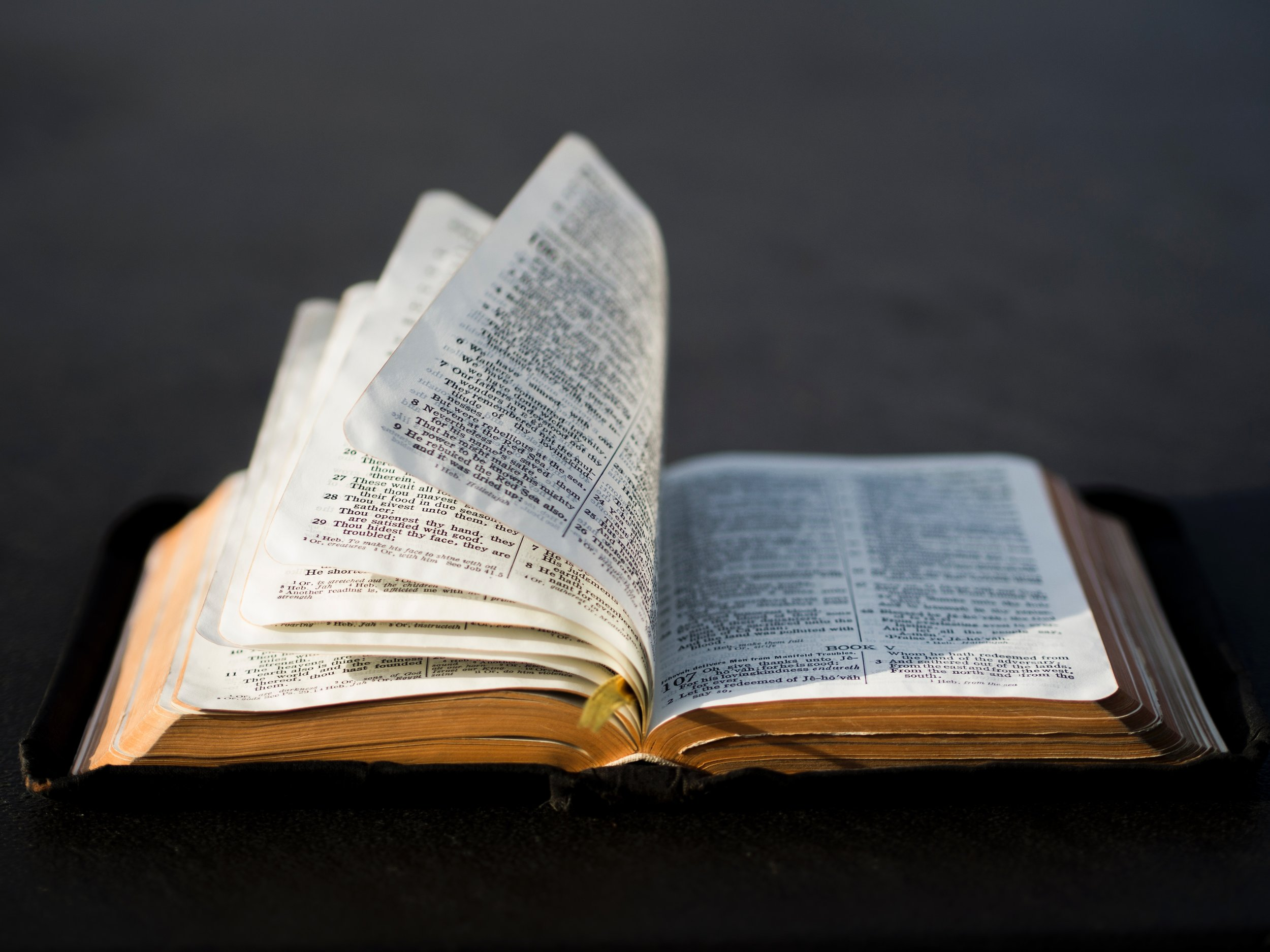 Scripture - We believe that the entire Bible is the inspired, infallible, and authoritative Word of God.
