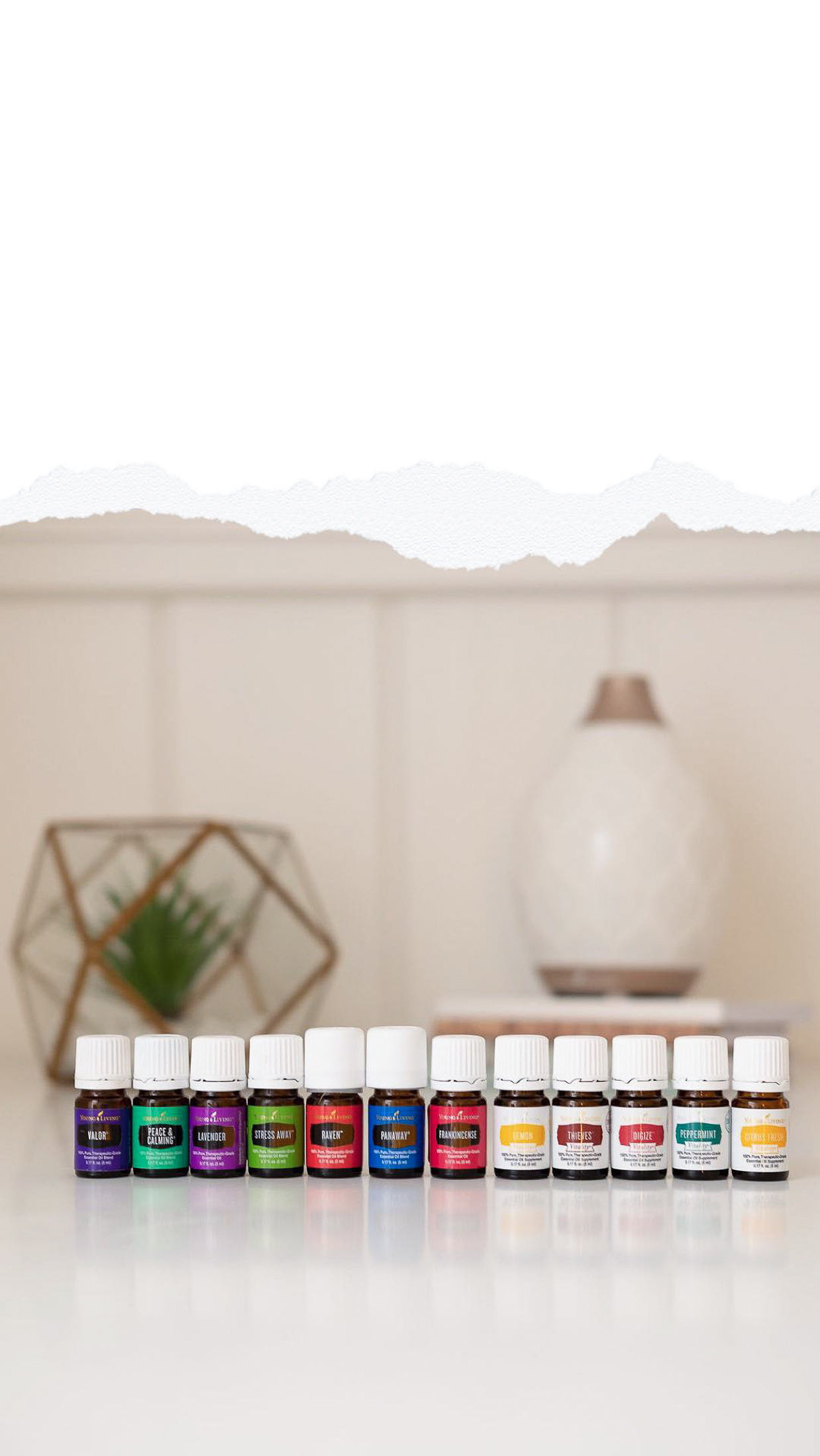 """Everything you need for cleaning, beauty & health and more is here!   What are Essential Oils and Why Do We Use Them?   Essential oils are oils made from flower, herb and tree parts (bark, roots, peels, petals). The cells that give a plant its fragrant smell is its """"essence"""". When the essence is extracted from a plant, it becomes an essential oil.  It takes a lot of plant product to make essential oils. More than 200 pounds of lavender flowers are used to make just one pound of lavender oil.  Not all products made with essence are essential oils. True essential oils are not blended with other chemicals or fragrances. They are made using a specific process that doesn't change the chemistry of the plant.  Essential Oils can support and release heavy emotions and feelings because of their connection to the limbic system in our brains (the area where memories and emotions are stored).   Why Young Living Essential Oils?   Not all oils are created equal. Young Living offers only pure, therapeutic grade, non-GMO essential oils, steam distilled in their own facilities, from their own farms. For 25 years, Young Living's Seed to Seal® quality commitment has been both a promise to you and a reflection of their sense of global stewardship and accountability. They believe we want only the best for our family and ourselves—products that are genuine, free from harmful synthetics, and of unmatched purity. Their proprietary Seed to Seal promise is their pledge to us, the earth, and themselves that Young Living products will be the best available, now and always.  Seed to Seal and its three pillars—Sourcing, Science, and Standards—are infused into every aspect of Young Living's exacting essential oil production processes, both on their own farms and their carefully curated family of partner farms. Seed to Seal is infused into their painstaking quality testing and retesting to ensure that our families enjoy the purest essential oil products on the planet. Ultimately, Seed to Seal is i"""