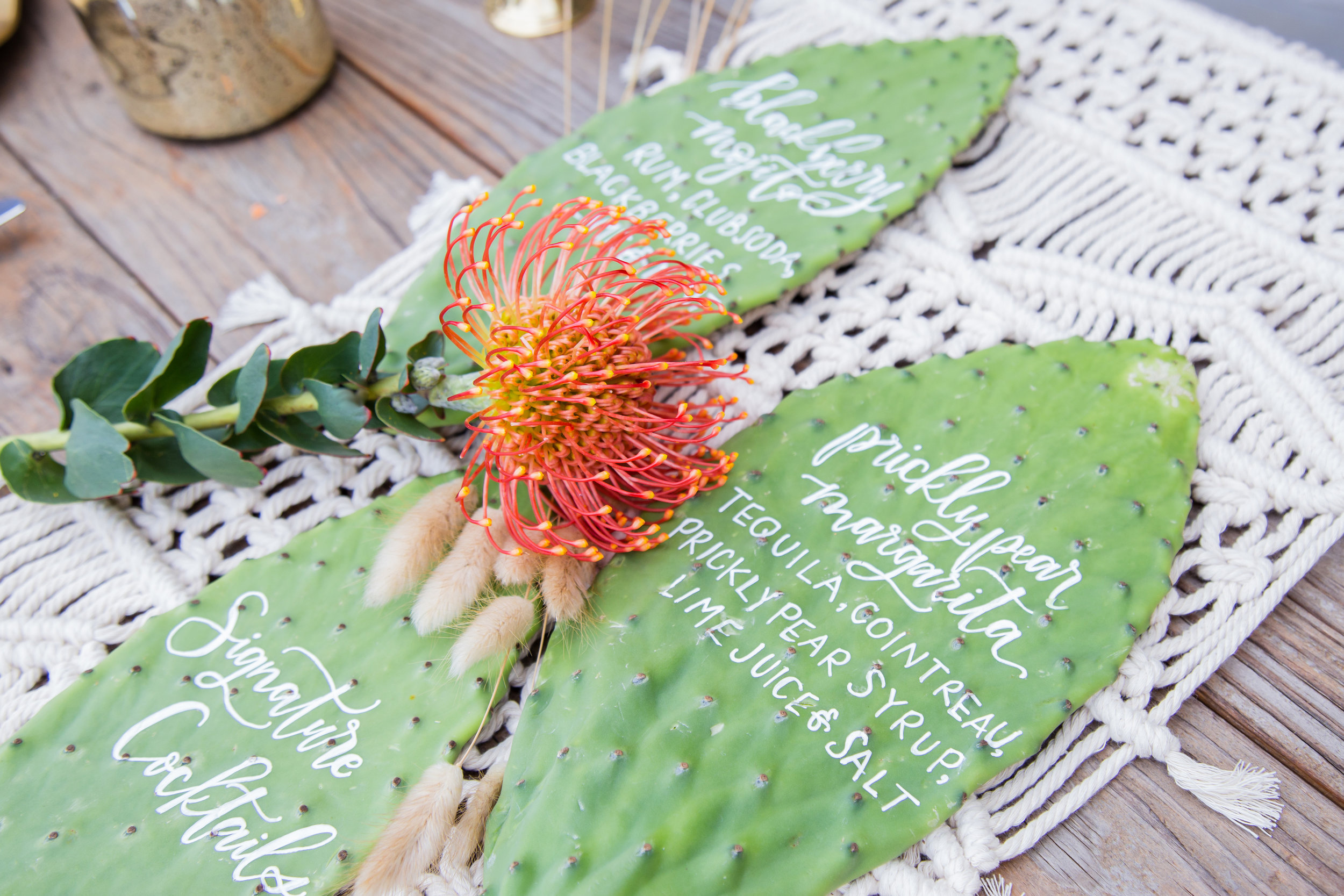 cactus-wedding-boho-chic-succulent-theme-party-calligraphy.jpg
