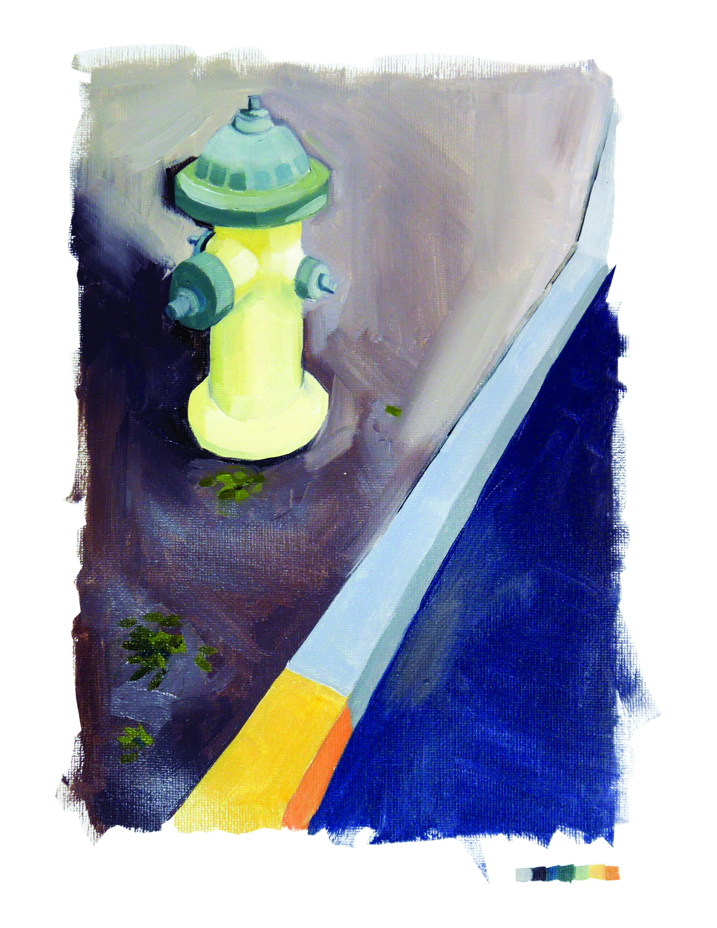 A Florida Hydrant