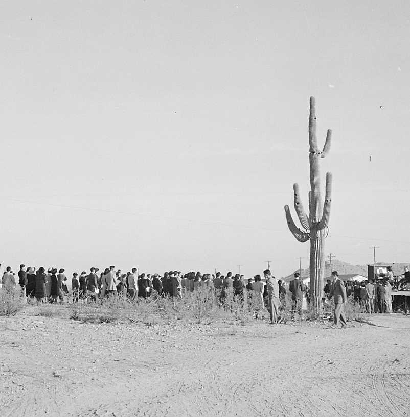 """The original caption for this photograph reads: """"Gila River Relocation Center, Rivers, Arizona. Sunrise Services (Christian) were held at this center Thanksgiving day."""""""