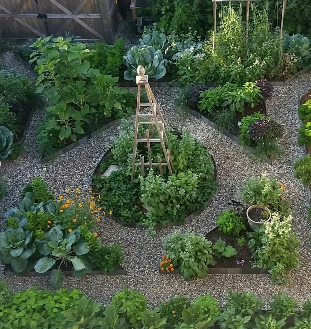 A potager garden...