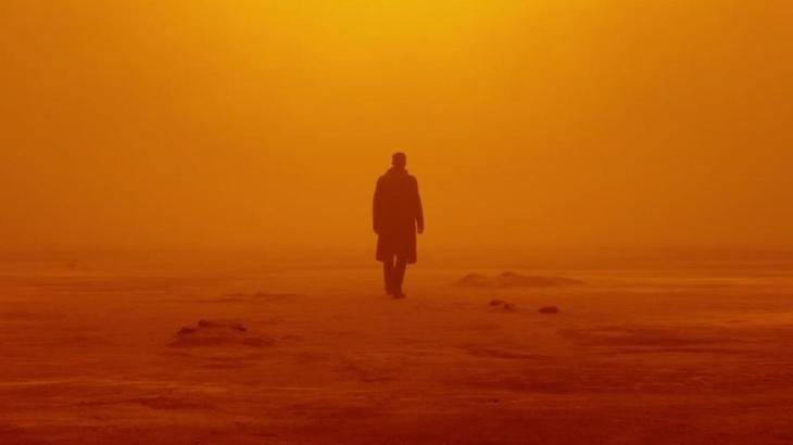 Blade Runner 2049 (DOP: Roger Deakins)