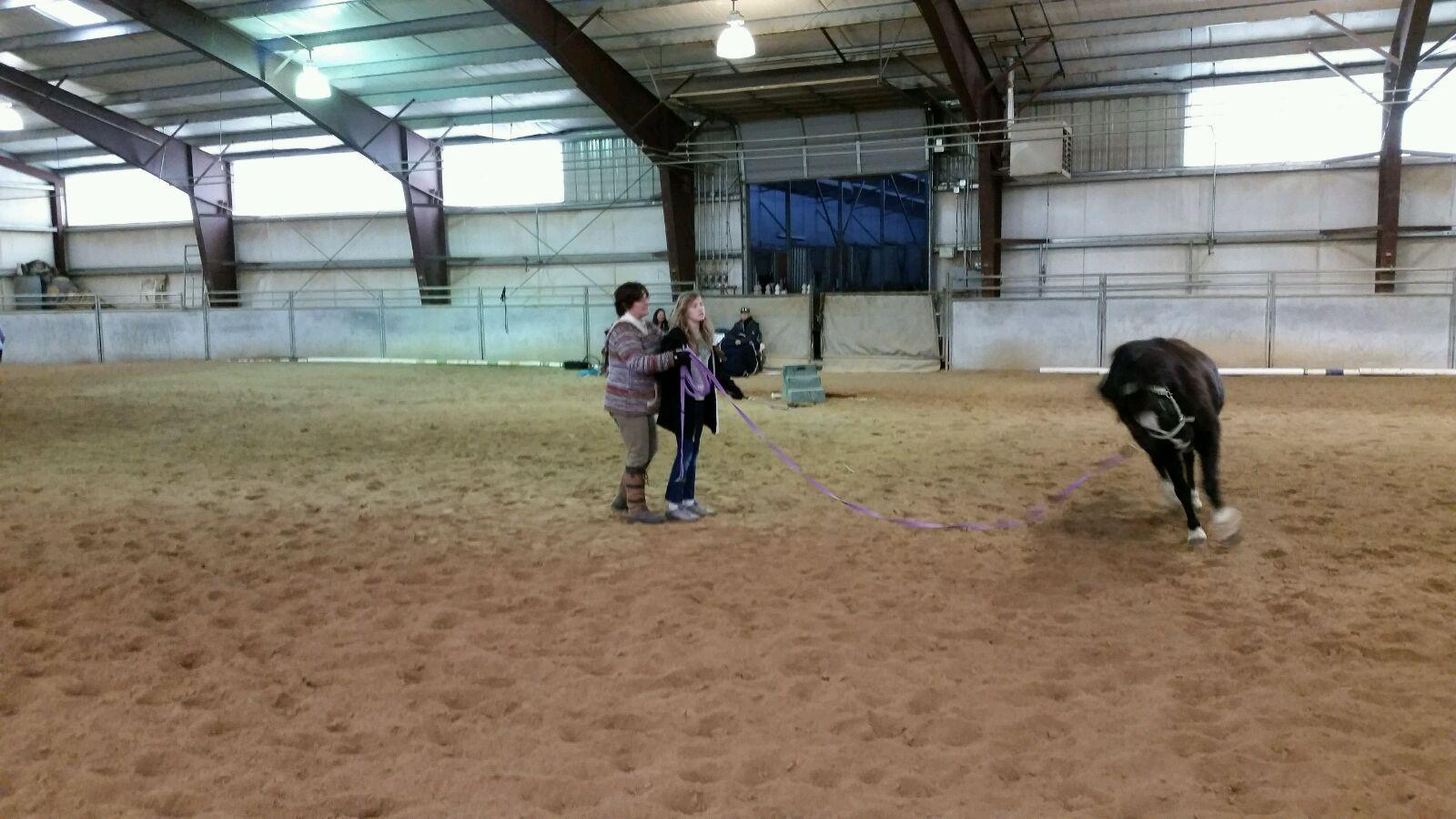 Lunging-Clinic-3.jpg