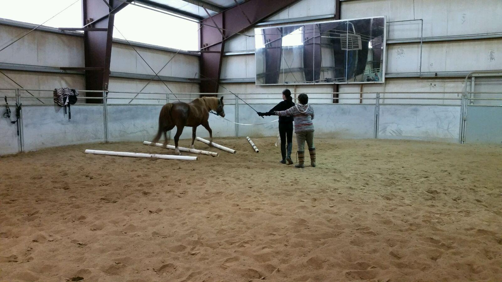 Lunging-Clinic-4.jpg